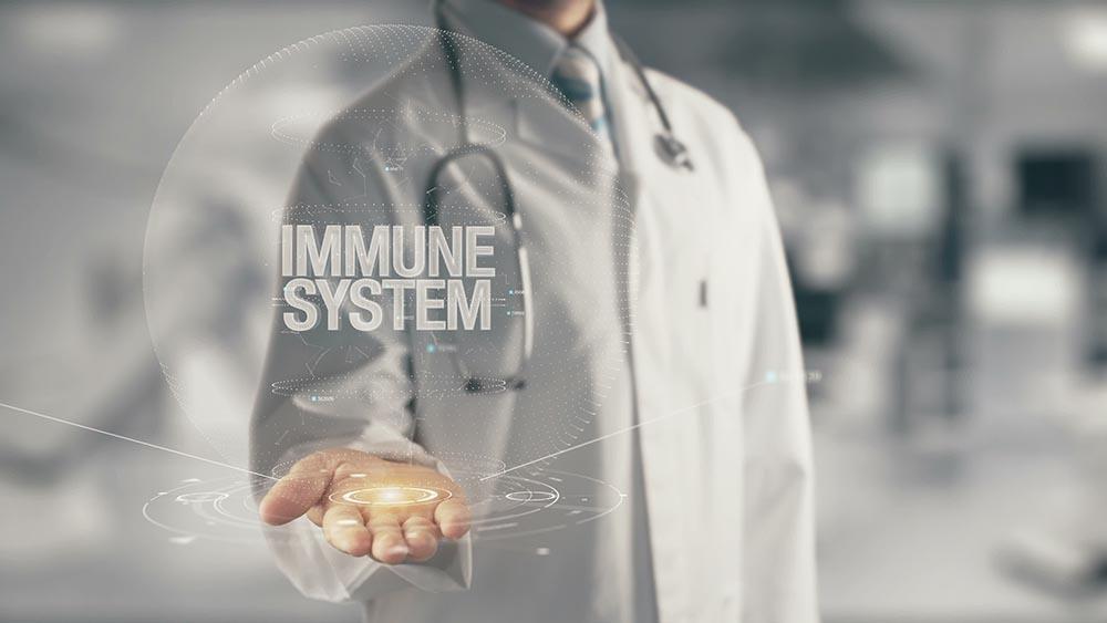hormones immune system austin
